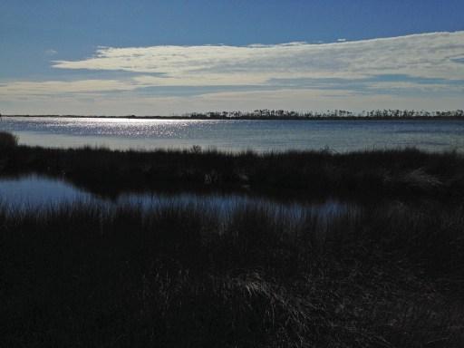 big lagoon st park4