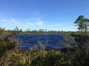 big lagoon st park9