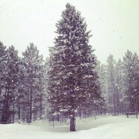 snowing at Tahltan