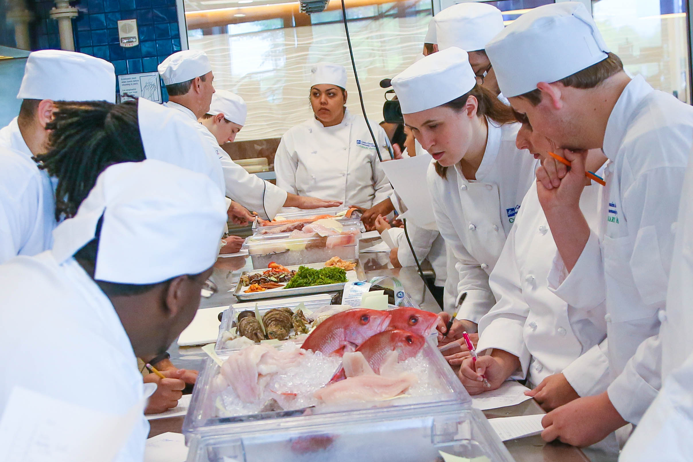Chef and Students