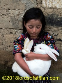 This rabbit in Panimaché, Chichicastenango, El Quiché is loved but fattened for a reason.