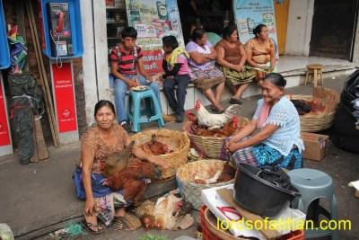Mazate´s market, Fowl saleswomen.