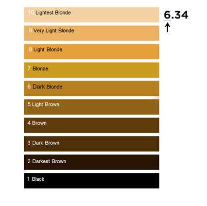 Chart to show   oreal professionnel international base hair colour numbering system also rh lorealprofessionnel