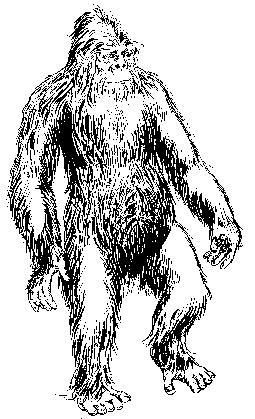 The Field Guide to Bigfoot, Yeti, and Other Mystery