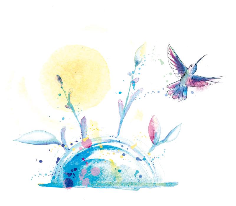 illustration aux teintes pastel colibri et lever de soleil