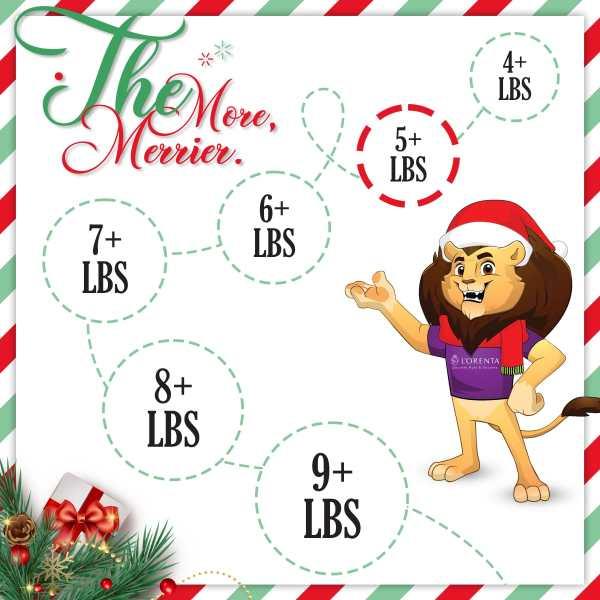5-pound-christmas-gift-set-lorentanuts Com Holiday Gifts
