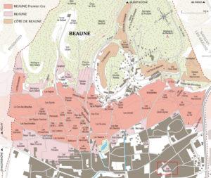 Beaune: La Maladière