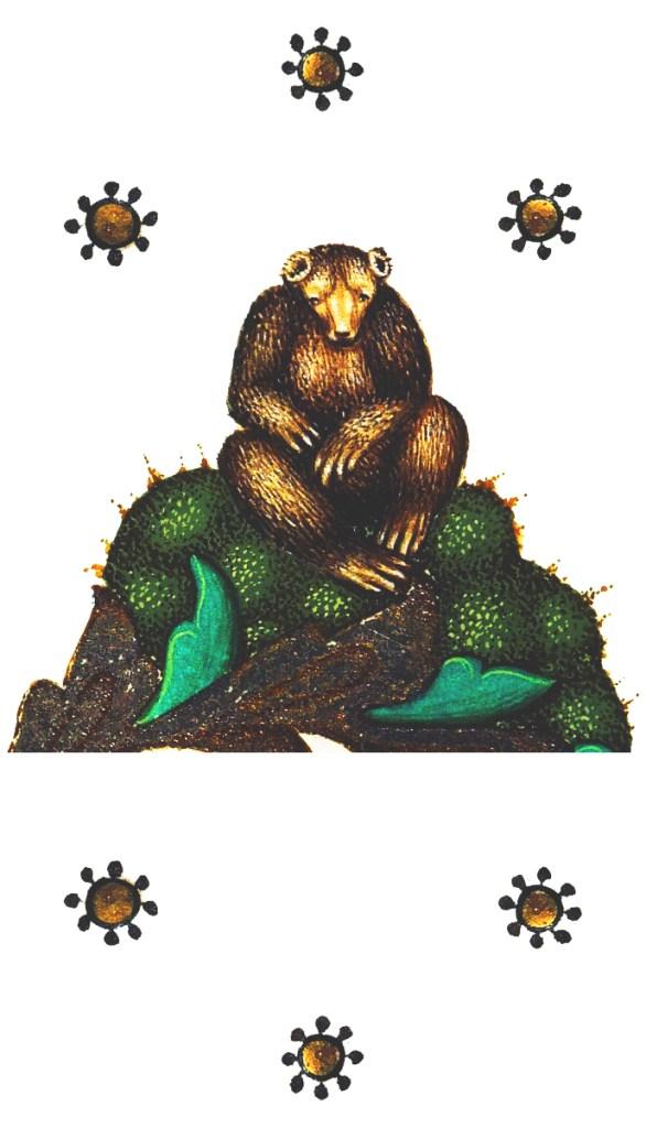 Björn justerad lång
