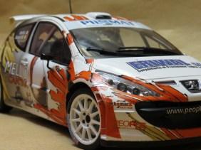 LorenzoImbimbo_Peugeot 207 Rally_019