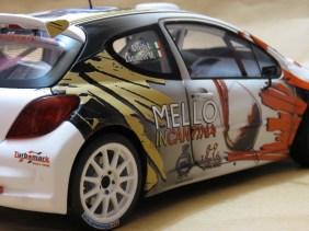 LorenzoImbimbo_Peugeot 207 Rally_020