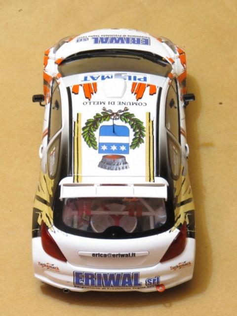 LorenzoImbimbo_Peugeot 207 Rally_021
