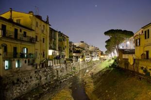 Case, alberi, alle Cure, Firenze