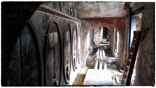 Vecchie botti nella cantina del Castello di Castelfalfi