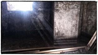 Raggi di luce nelle cantine del castello di Castelfalfi