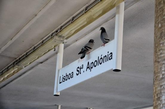 Lisboa St. Apolonoia