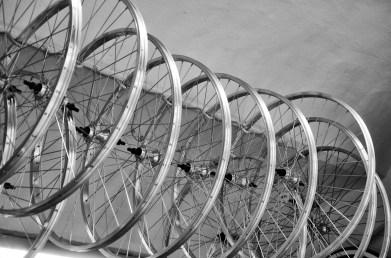Ruote nella CicloOfficina il Bandito e il Campione a Firenze