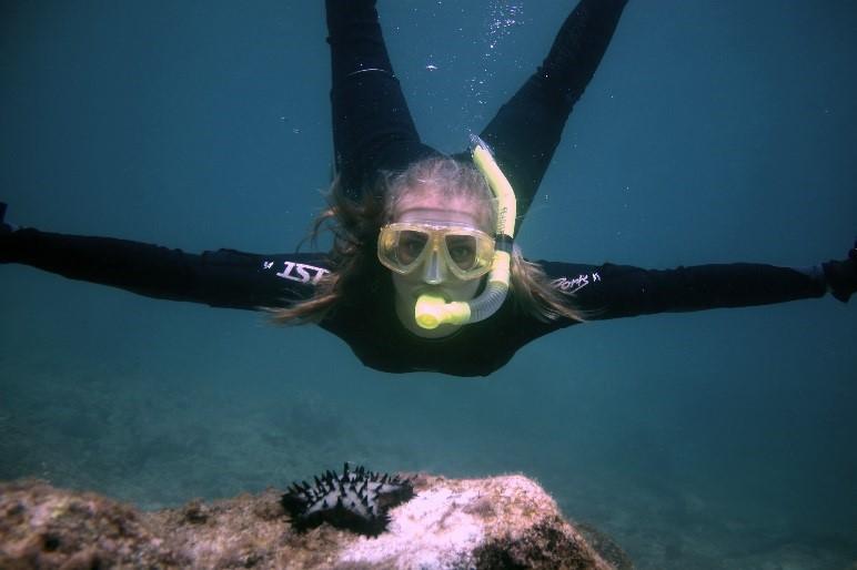 snorkeling free diving