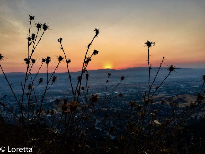 It's a great hike up El Toro, and sunrise is the best part of the day.