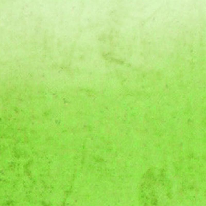 sachet couleur 8 vert anis