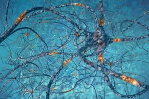 This spectacular image of a neuron shows the rich prolific regeneration of neurons and synapses with IV ketamine + neuroplasticity.