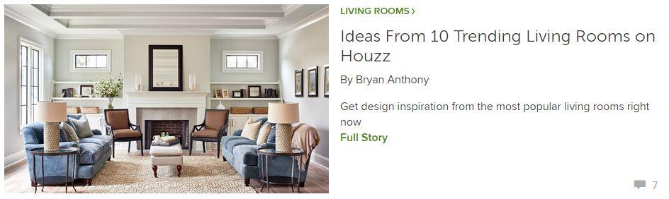 Houzz Living Room Trends