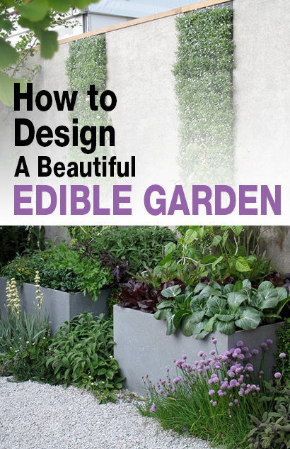 How to Design a Stylish Vegetable Garden