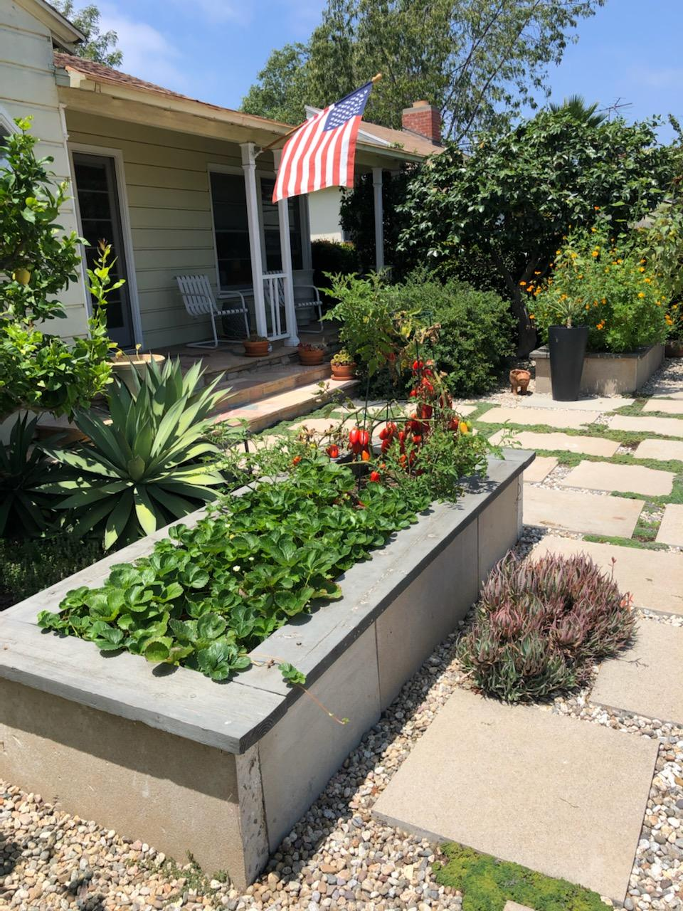 How to Design a Small Vegetable Garden