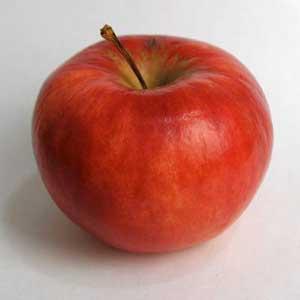 https://i0.wp.com/www.loriendale.com.au/apple_pictures/geeveston-fanny.jpg