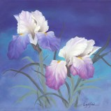 Paintings by Lori Garfield : Spring Iris, painting of two iris flowers in purple and mauve hues. Original Oil Painting by artist Lori Garfield, Medford Oregon