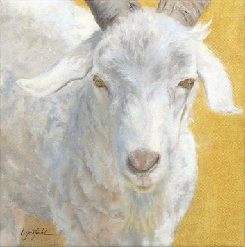 Paintings by Lori Garfield : Tuck the Buck, portrait of a white billy goat. Original Oil Painting by artist Lori Garfield, Medford Oregon