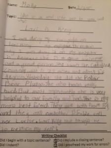 Molly Essay