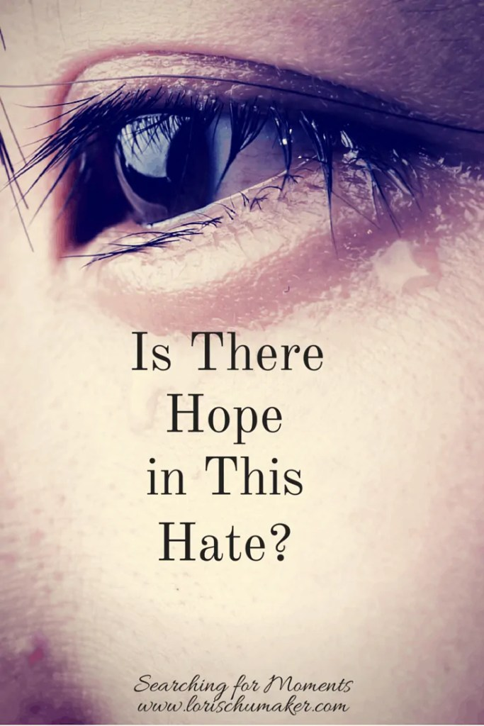 As a regular person, I can feel helpless and hopeless.What can we do in our everyday lives to help the devastation that is engulfing our country? -Is There Hope In This Hate - #MomentsofHope - Lori Schumaker