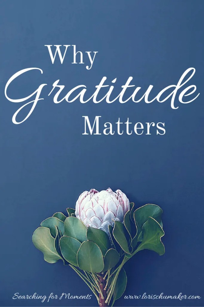 Now more than ever we need a little more happiness. That happiness starts with some searching. Some searching for the good in our lives. it starts with gratitude. Why Gratitude Matters { #MomentsofHope LInk-Up} - Lori Schumaker