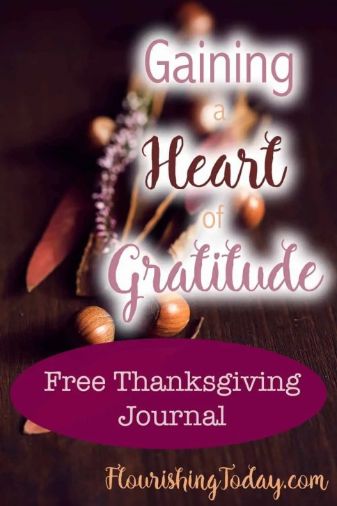 Gaining a Heart of Gratitude by Alisa Nicaud