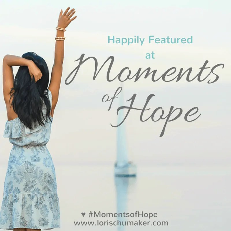 Searching for Moments - Lori Schumaker