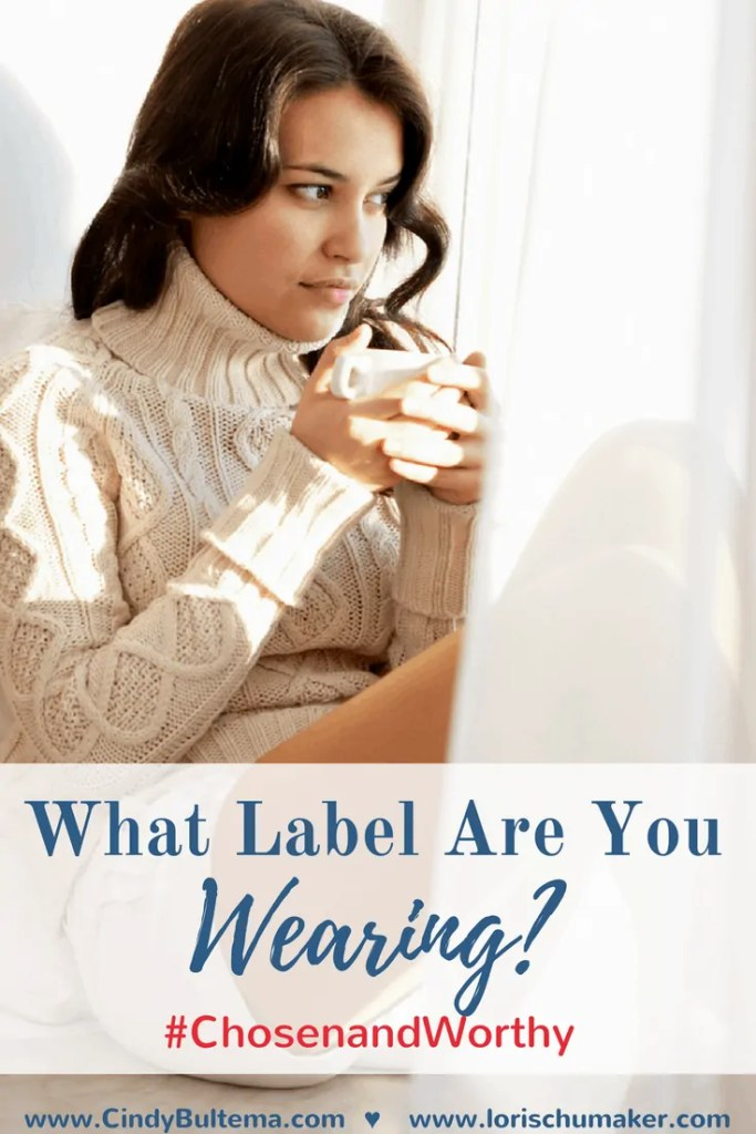 What Label Are You Wearing- Have you ever allowed words to stick to you like a sticky descriptive nametag? Join Cindy Bultema as she shares her story of discovering she is #ChosenandWorthy. Learn Truth to replace the lies of shame and rejection. -Lori Schumaker