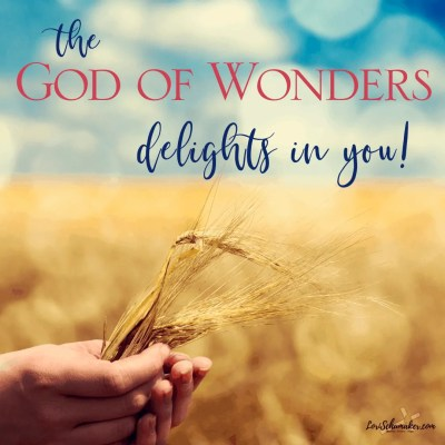 The God of Wonders delights in us and gives us a way to walk out of shame.We can claim our child-of-God identity and live in the fullness of His love and grace. #devotions #hope #godslove #grace #godofwonders #shame #labels #identityinchrist #truth