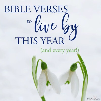 A list of powerful Bible Verses to live by this year and every year! Jumpstart growth in your faith life with these verses and the Surrendered Hearts Manifesto. #bibleverses #bibleversestoliveby #bibleverses #bibleversesforwomen #bibleversesforlife #hope #grace #lifeguide #lifepurpose #growinginfaith #scriptureresources #findingscripture #scriptureaboutlivngwell