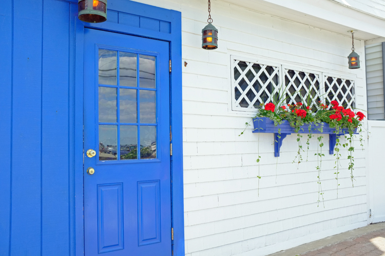 blue-door-and-planter2