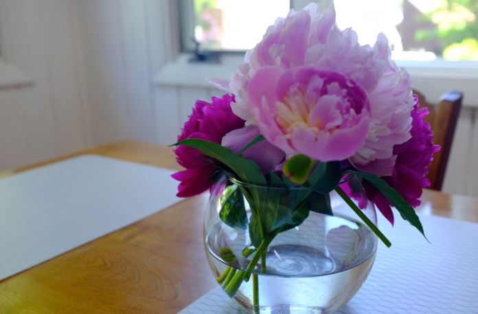 pink-peonies-on-a-table2