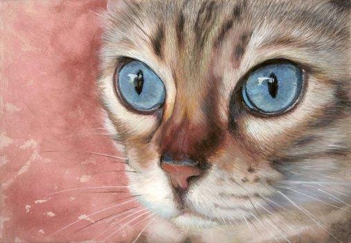beaux-yeux
