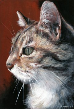 chat-claudine