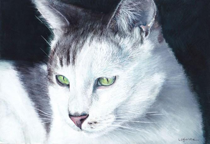 chat peinture gouache