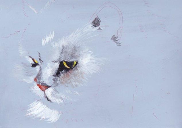 gouache chat persan pas a pas