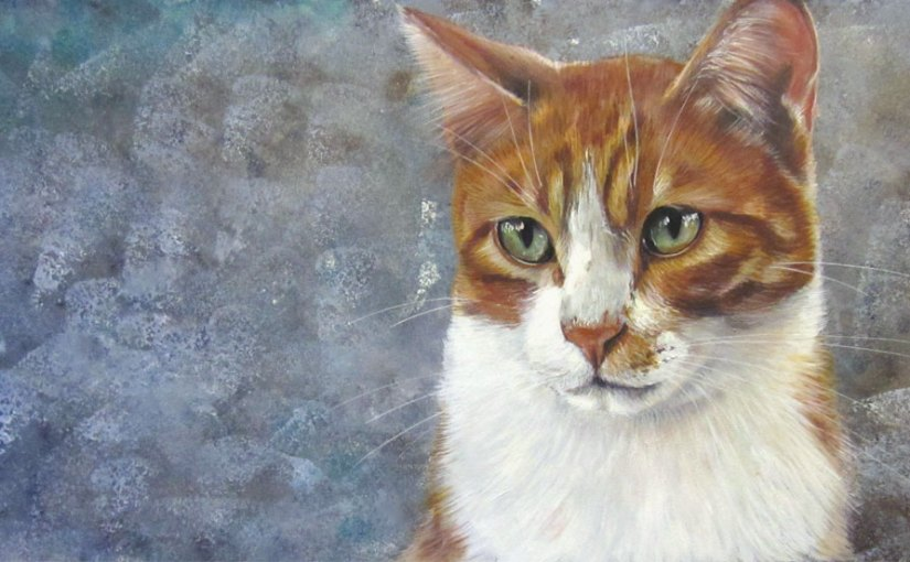 Commandez votre tirage d'art du chat roux