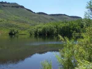 Good fishing at Flatiron Reservoir in No Colo