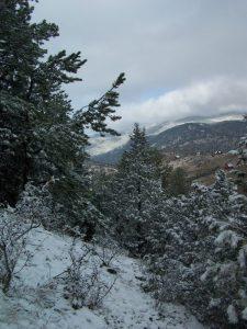 Views of Drake, Colorado