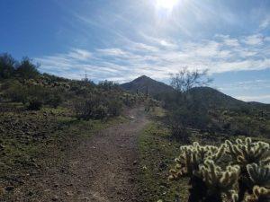 Kuma takes on Dixie Mountain