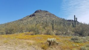 Apache Mountain