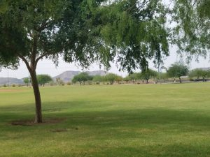 Paseo Highlands Park